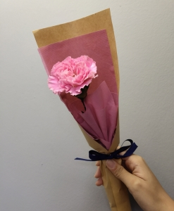 Single Stalk Carnation